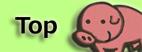 新海智也のホームページ
